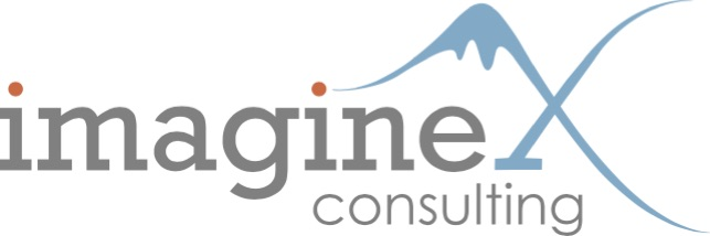 imagineX Consulting Logo